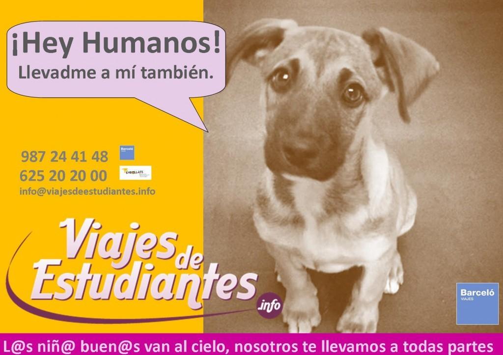 cartel-estudiantes-2014-1024x723