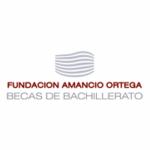 http://becas.faortega.org/